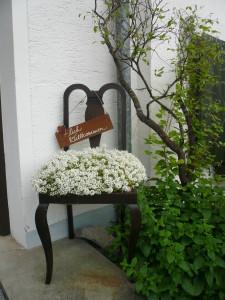 Herzlich Willkommen Stuhl